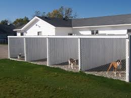 indoor outdoor dog kennels and runs