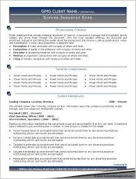 Resume Examples, Best Professional Resume Templates Professional Synopsis  Targeted Competencies Career Chronology: Amazing top