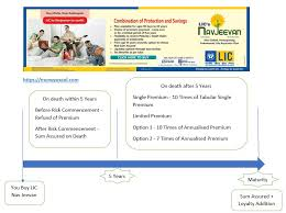 Lic Nav Chart Lic Navjeevan Plan 2019 Key Features Analysis Review
