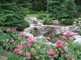 Backyard Ponds Backyard Ponds And Water Features Home Design Lover Best