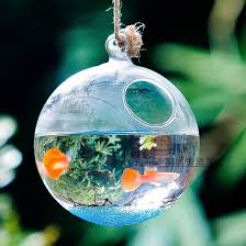 Decorative Fish Bowls Round Bottom Glass Terrarium Aquarium Hanging Glass Globe Fish 12