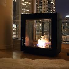BestVentlessGasFireplaceInsert  DesignForLifeu0027s PortfolioVentless Fireplaces