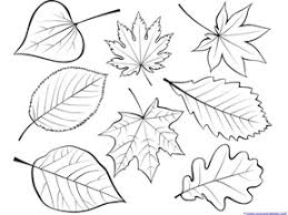 Printable leaf coloring pages for kids. Fall Leaves And Trees Coloring Printables 1 1 1 1