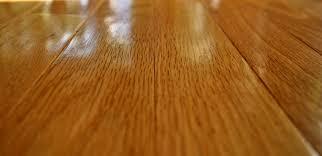 best steam mops for hardwood floors reviews