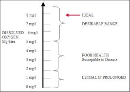 Blood Oxygen Level Chart Body Oxygen Demand