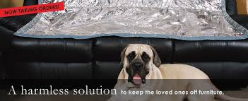 PetzOFF™ Home Keep Cats and Dogs off the furniture couch bed