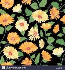 Marigold Floral Design Floral Pattern Flower Marigold Seamless Background