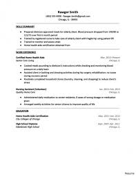 Health Care Resume Objective Examples Home Health Care Resume