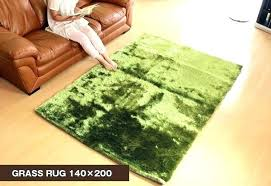 rug that looks like grass grass rug feel and look like a lawn grass rug takes rug that looks like grass jade