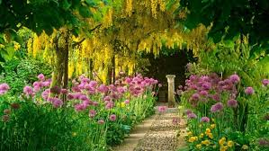 Small Picture Flower Garden Hd Collection Of Beautiful Gardens With Best Flowers