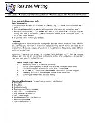 Sample Resume Objectives For Internship Position Resume For Study