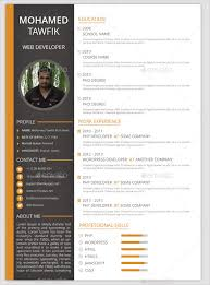 Resume Format Template Gorgeous 28 Best Resume Formats DOC PDF PSD Free Premium Templates