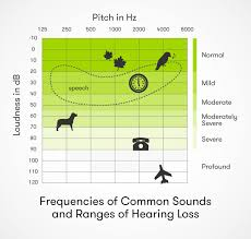 Normal Hearing Range Age Chart Signs And Types Of Hearing Loss Audicus