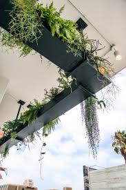 Ferns and other foliage plants spill over the sides of this hanging planter,  which lines