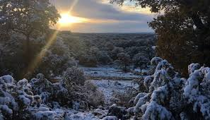 A Snow Covered Texas Scenes From Last Weeks Beautiful Snowfall