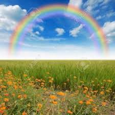 green grass blue sky flowers. Green Grass Blue Sky Flower Rainbow Stock Photo, Picture And Flowers