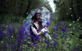 <b>Зонты Flioraj</b>: женские модели, отзывы