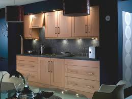Small Picture kitchen cupboard Contemporary Style Replace Kitchen Cabinet