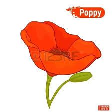 poppy template remembrance poppy template red making webbacklinks info