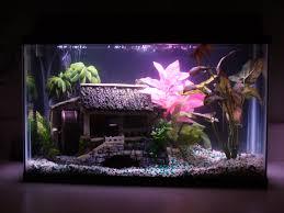 Mario Brothers Aquarium Decorations Fish Tank Idea Somethings Fishy Pinterest Ideas Fish Tanks