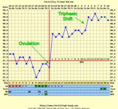 Early Pregnancy Bbt Chart Pregnant Www Bedowntowndaytona Com