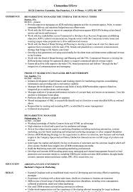 Download BB Marketing Manager Resume Sample as Image file