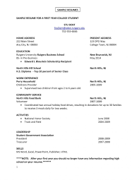 Sample Resume For College Student Looking For Summer Job Resume Papers