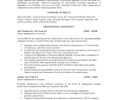 It Manager Resume Objective Template Statement Sample Retail ...