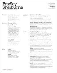 Modern Column Resume Three Column Resume Template Woodnartstudio Co