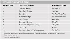 Goldwell Underlying Pigment Chart Formulation Basics With Goldwell Professional Hair Color