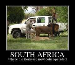 Five hilarious memes about South Africa to make your day that much ... via Relatably.com