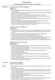 Key Account Manager Resume Marketing Account Manager Resume Samples Velvet Jobs 14