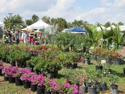 florida tech s 8th annual botanical fest is the perfect opportunity to greet spring not everyone is interested in gardening but few among us are immune to