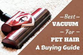 best vacuum for pet hair written beside close up of hoover head on a rug