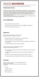 Business Cv Sample Myperfectcv