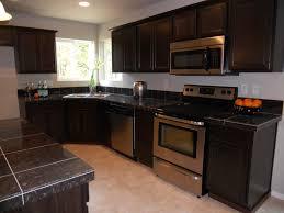 Modern Kitchen Dark Cabinets Furniture Wonderful Modern Kitchen Cabinet Models Dark Granite