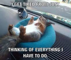 I get tired.. | Funny Pictures, Quotes, Memes, Jokes via Relatably.com