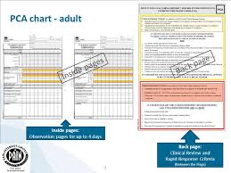 Between The Flags Observation Chart Pca Patient Controlled Analgesia Chart Adult Education
