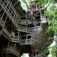 Sarah Pinsker  Songs And Fictions  BlogLargest Treehouse In America