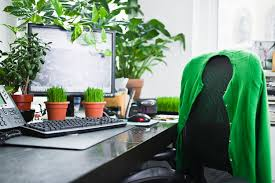 office greenery. Brilliant Greenery A Leafy Office Is A Happier Office Study Finds In Greenery