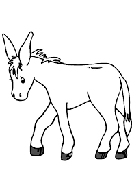 Small Picture Donkey on the Meadow Colouring Page Fun Colouring