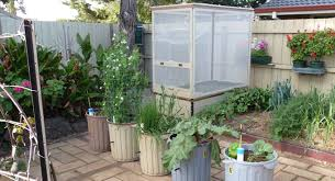 Small Picture Wicking worm beds Sustainable Gardening Australia