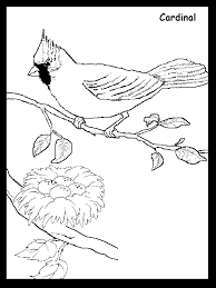 Small Picture Cardinal Coloring Pages Coloring Home