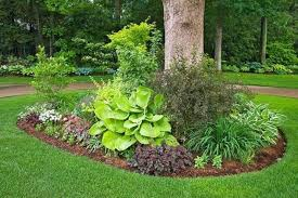 Tree landscaping ideas Small Flower Beds Homeyou Magical Around The Tree Landscaping Ideas Homeyou