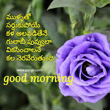 Good Morning Quotes In Telugu To Impress Your Loved Ones Pungii