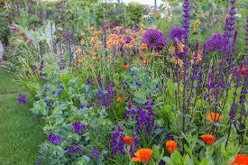 best garden plants. Contemporary Best The Anneka Rice Colour Cutting Garden Designed By Sarah Raven RHS  Chelsea Flower Intended Best Garden Plants T