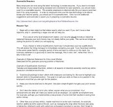 Qualifications For A Customer Service Representative Customer Service Resume Summary 650 612 Resume Summary For