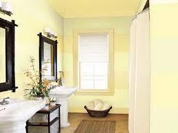Elegant bathroom paint colors