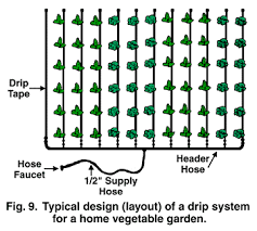 home irrigation design. typical design (layout) of a drip system for home vegetable irrigation