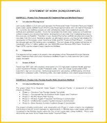 Consulting Statement Of Work Template Woodnartstudio Co
